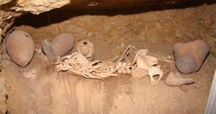 الصين تعلن اكتشاف مقبرة ولوحات جدارية عمرها 750 عاما